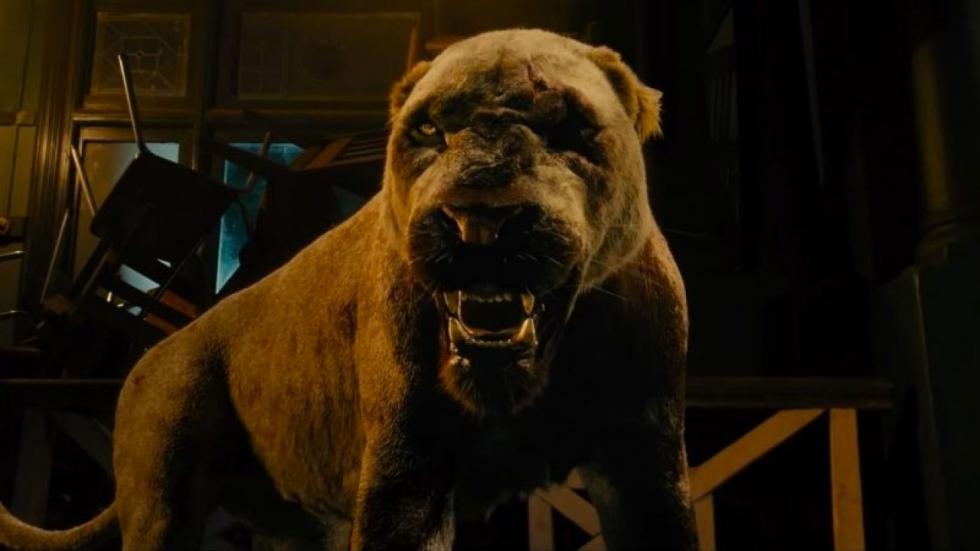 5 films waarin leeuwen aan het moorden slaan
