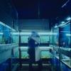 Schokkend actueel: trailer 'Little Fish' met killervirus