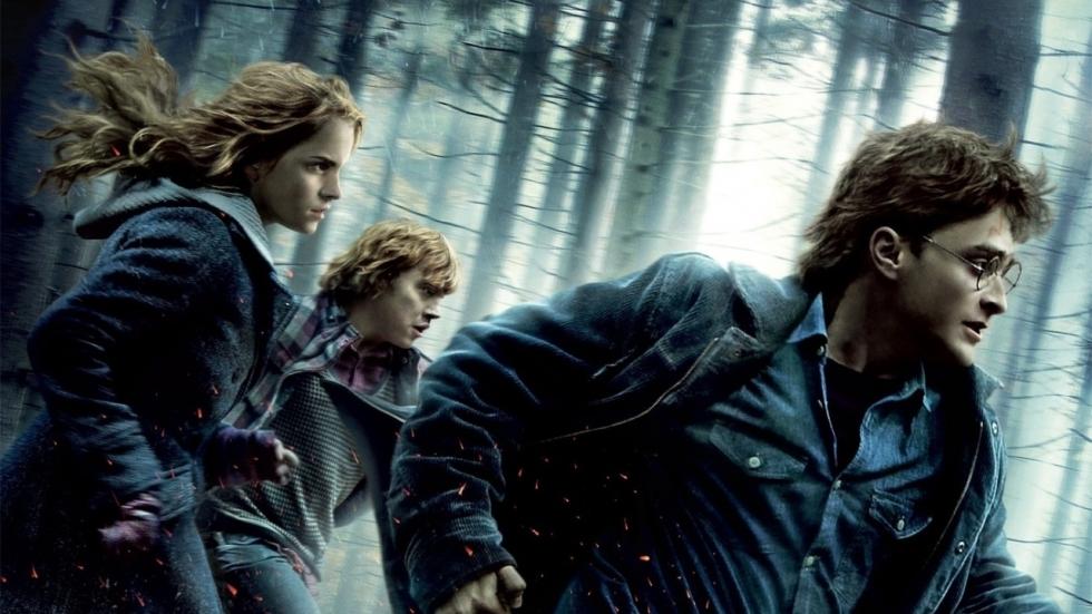 'Harry Potter'-fans reageren behoorlijk verdeeld op nieuws over een live-action serie