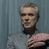 FilmTotaal belt met muzieklegende David Byrne