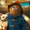 3 films op Netflix die iedereen gezien moet hebben